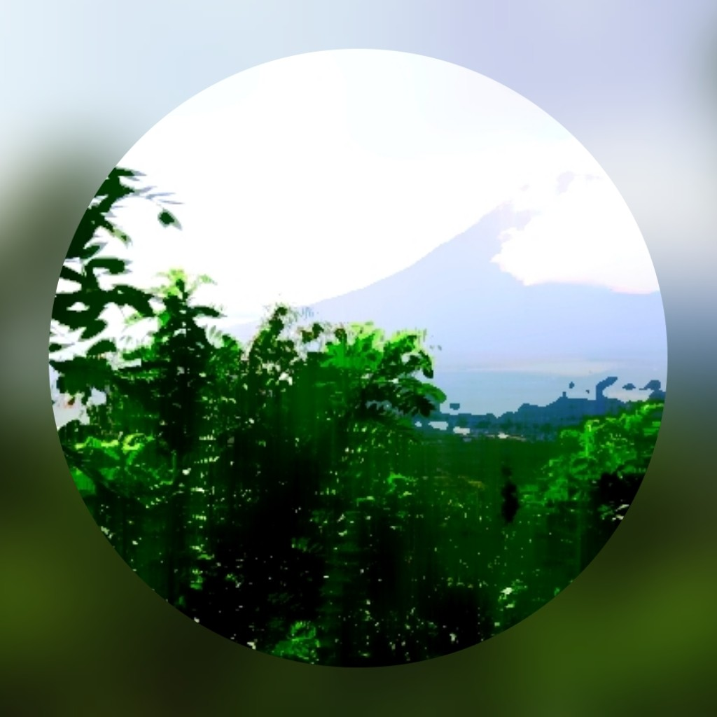PhotoGrid_1614360707148.jpg